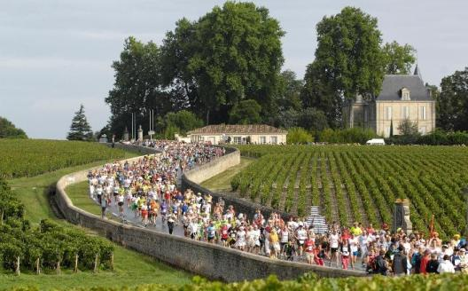 A marathon through the Bordeaux vineyards?